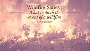 Wildfire saftey Steve Farzam