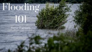 Floods Steve Farzam